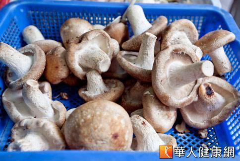 香菇屬於溫熱食物,在寒冬中,對於銀髮族足部健康有加分效果。(攝影/黃志文)