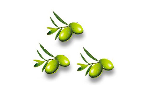 橄欖味甘澀酸有刺激腸胃蠕動的效果,可幫助過年期間吃進大魚大肉後,消化不良而容易腹部脹氣、肚子悶痛的人消化。(圖片/取材自互動百科)