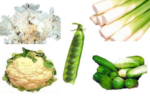 筊白筍、小黃瓜、花椰菜、豌豆、白木耳等能有效幫助美白抗老。(圖片/取材自維基百科)