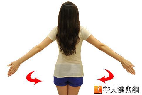 手臂伸展操幫助瘦手臂。(攝影/黃子倫)