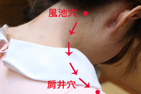 風池穴到肩井穴的刮痧方向。(攝影/黃志文)