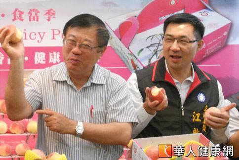 農委會主委陳保基(左)與立委江啟臣(右)大啖梨山蜜桃,強力推銷在地好水果。(攝影/張世傑)