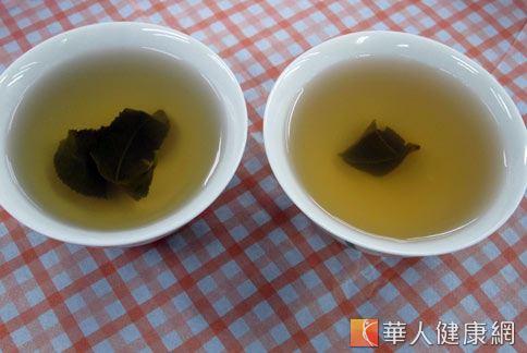 山楂綠茶(攝影/黃子倫)