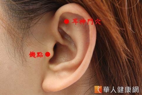 饑點、耳神門穴,都有抑制食慾,舒緩緊張的功效。