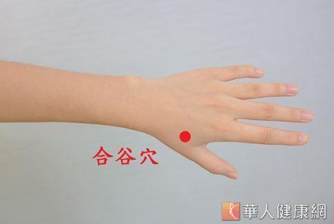 中醫師彭溫雅認為按摩合谷穴或是泡手,更能有效改善鼻過敏。
