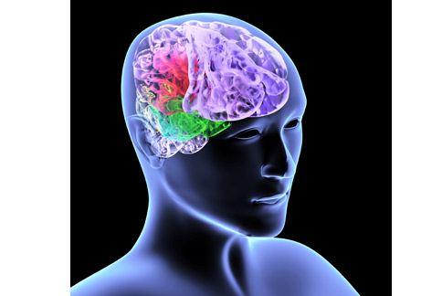 出血性腦中風的死亡率,甚至可以達到7成。