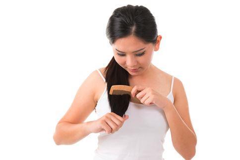 年節前工作壓力特別大,睡眠、作息不正常,很容易導致掉髮。