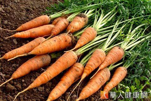 有機農產品因不使用農藥對抗病蟲害,所含的壞物質較少,對人體相對健康。