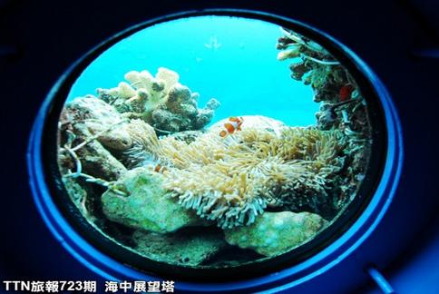 圆形观景窗,可以欣赏360度的海底世界