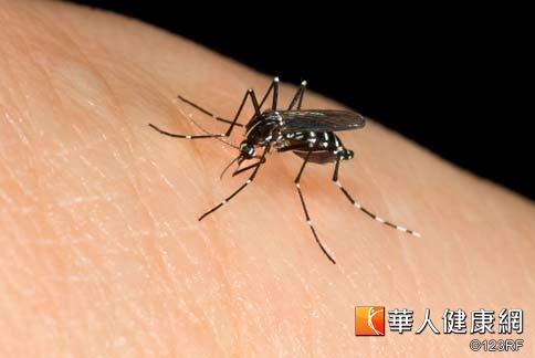 消基會表示,橘子皮含有特殊氣味,可以對蚊蟲產生驅避的作用,減少人體被叮咬的機會。