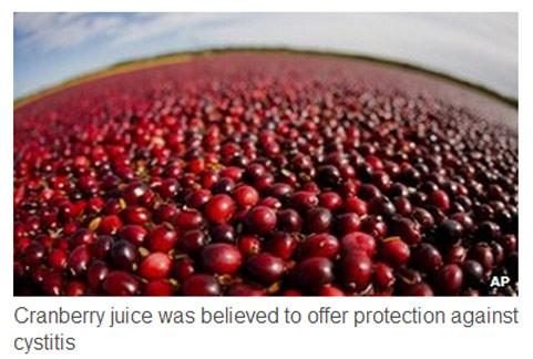 若無法持之以恆長期飲用蔓越莓,那麼對抗泌尿道感染的效果與實際上將有落差。(圖片/取材自英國《BBC》)